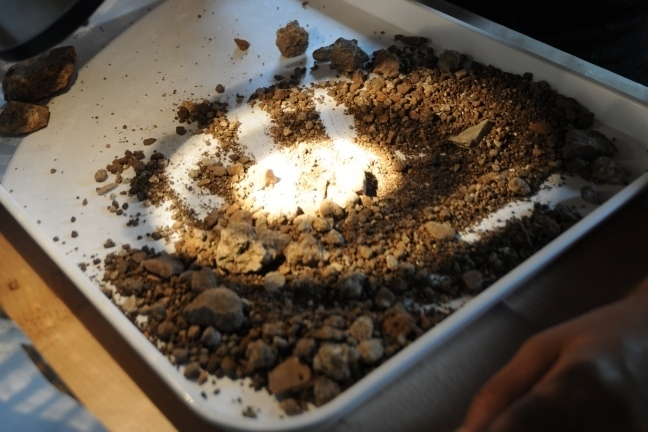 Sorting residues for palaeobotanical material