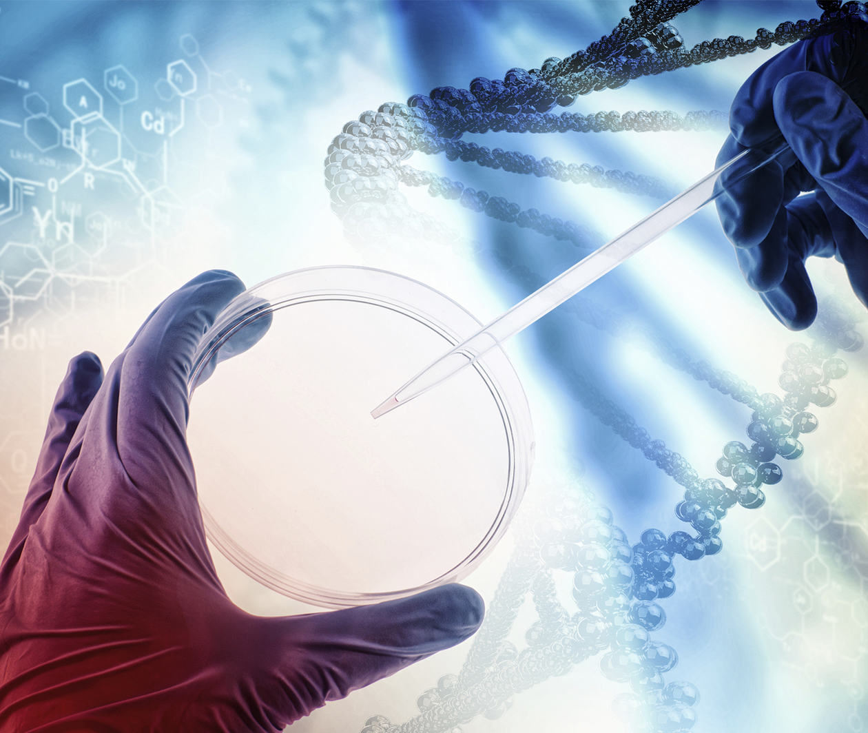 Genomic Technologies in Clinical Diagnostics: Molecular Techniques
