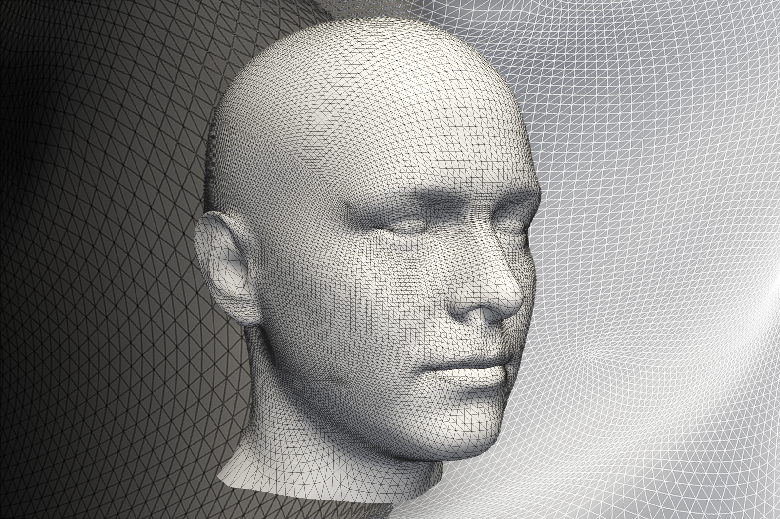 Statistical Shape Modelling Online Course