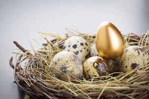 A golden egg sits in a next with other normal eggs, representing wealth and income inequality