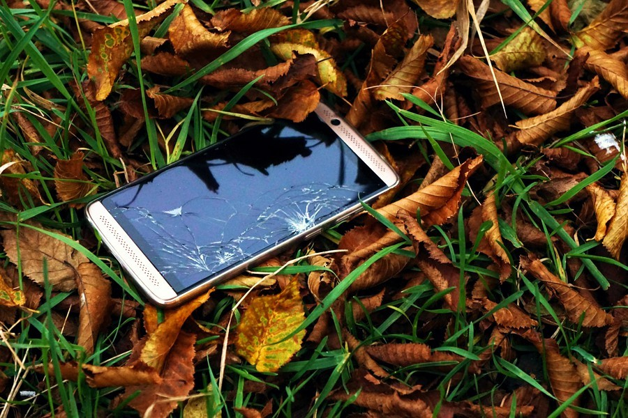 A mobile phone with a cracked screen lies on the ground amongst leaf-litter