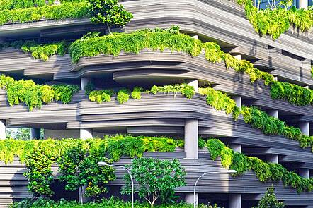 Green plants on apartment balconies