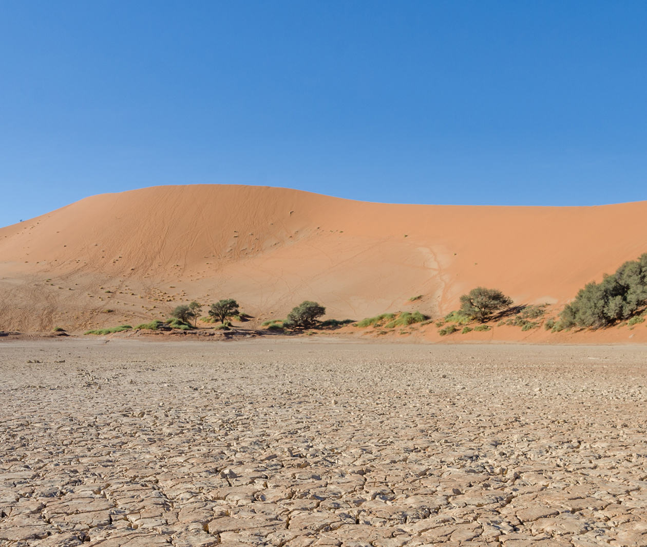 Desertification: Problems and Solutions