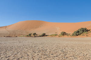 An image of a desert