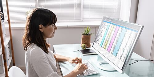 Woman using excel in the office