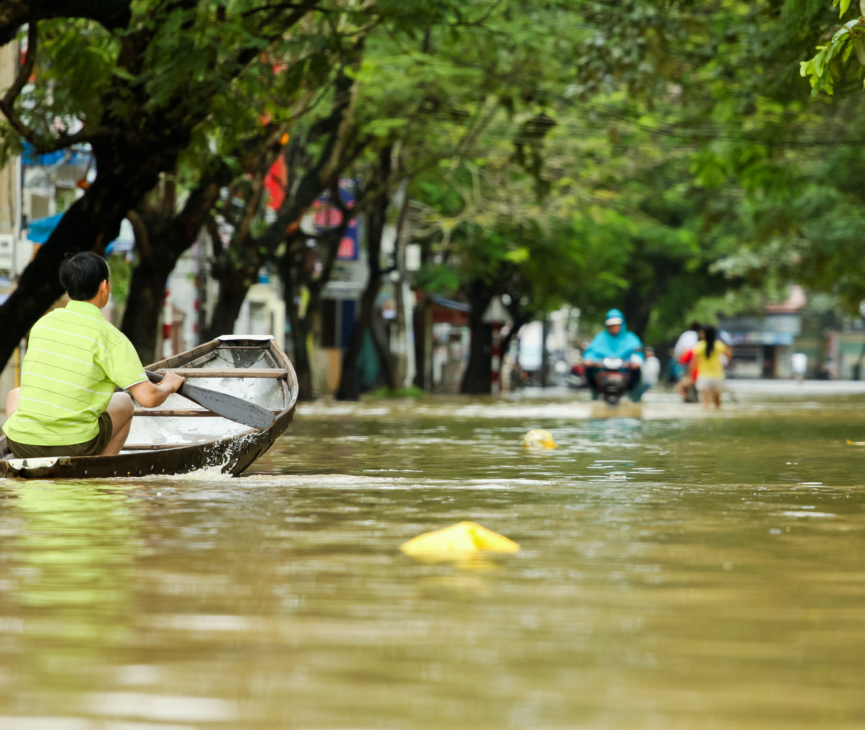 Organisational Learning, Change and Resilience for Disaster Interventions
