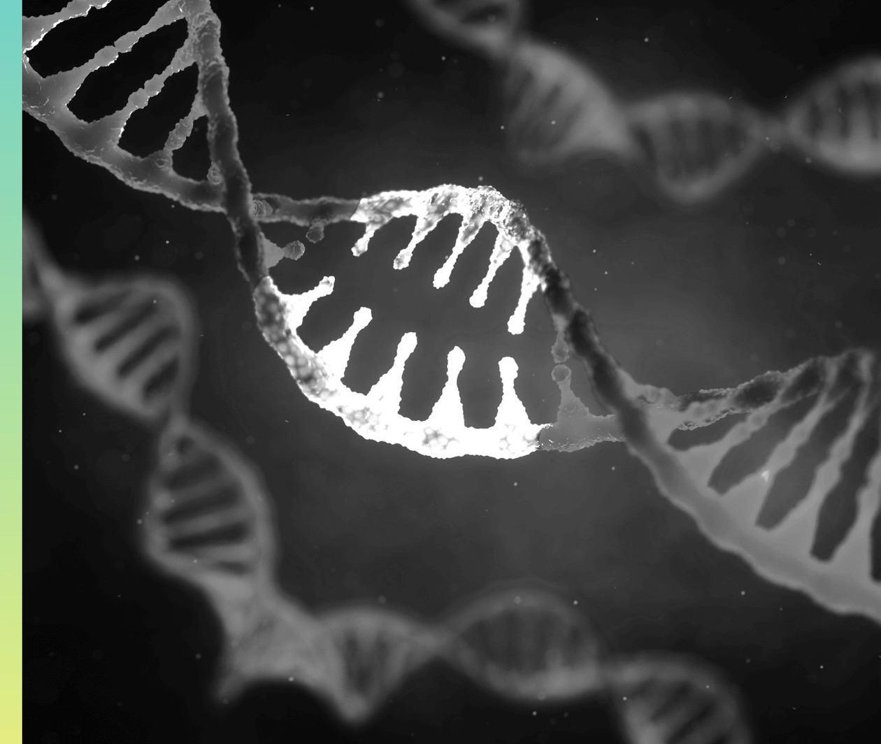 MedTech: Exploring the Human Genome