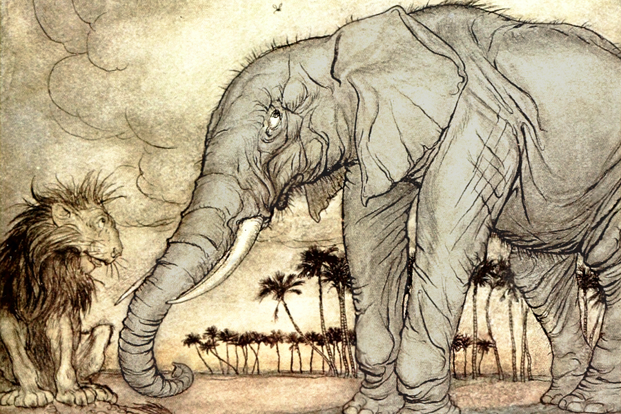 Illustration of an elephant and a lion