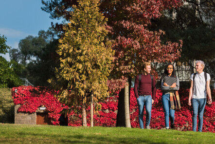 three students walking across the grounds of Streaham campus