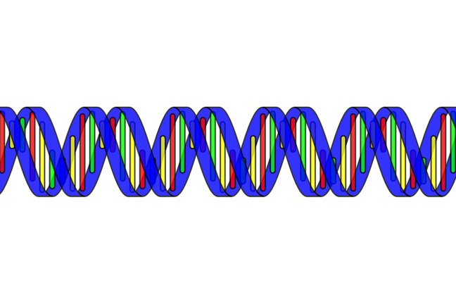 Double helix DNA sequence in bright colours