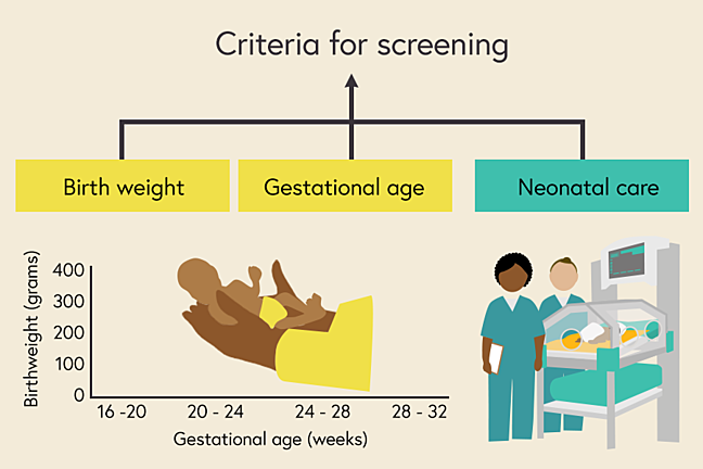 Illustration of the three main factors which influence screening - gestational age, birth weight and neonatal care
