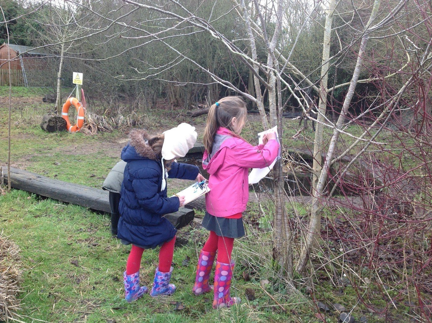 A photo of 2 children standing outside by a tree recording their measurements on a tally sheet