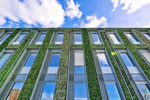 Photo showing the green wall of the University of Leicester Passivhaus Centre for Medicine