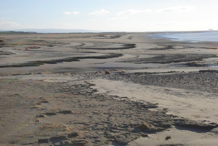 Eroded sediment of Morecambe Bay exposed at low tide.