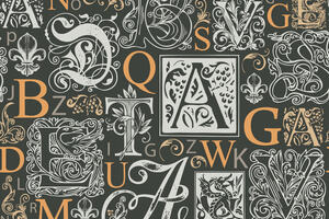 Letters in various fonts and typesets
