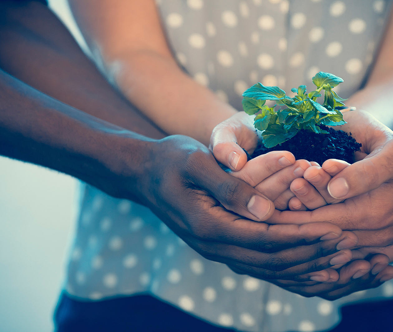 Social Enterprise: Growing a Sustainable Business