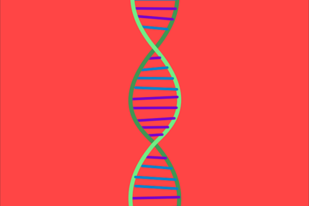 Basic strand of DNA