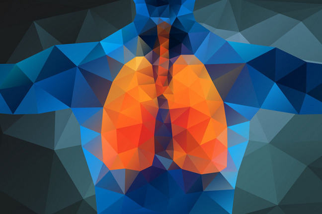 colourful modern pixelated-like image of the lungs representing Cystic fibrosis