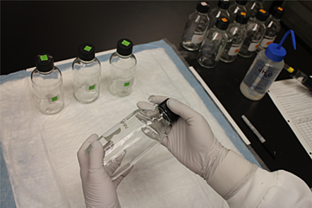 This image depicts a pair of gloved hands holding a glass bottle with a black lid screwed on. Several others of the same bottle are placed upon the desk. This is the conduction of the CDC bottle bioassay, which is used to analyse insecticide resistance.