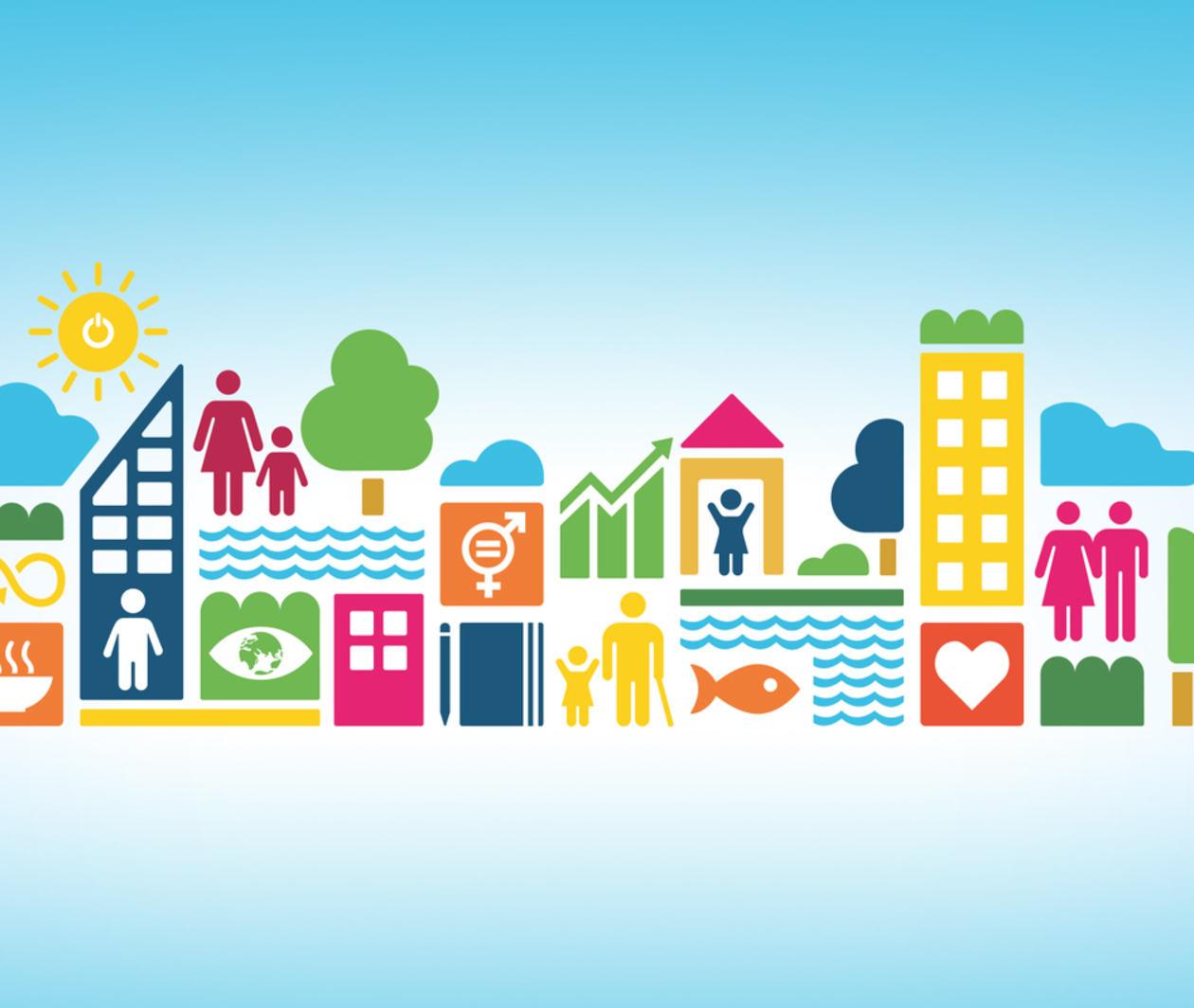 Organising for the Sustainable Development Goals (SDGs)