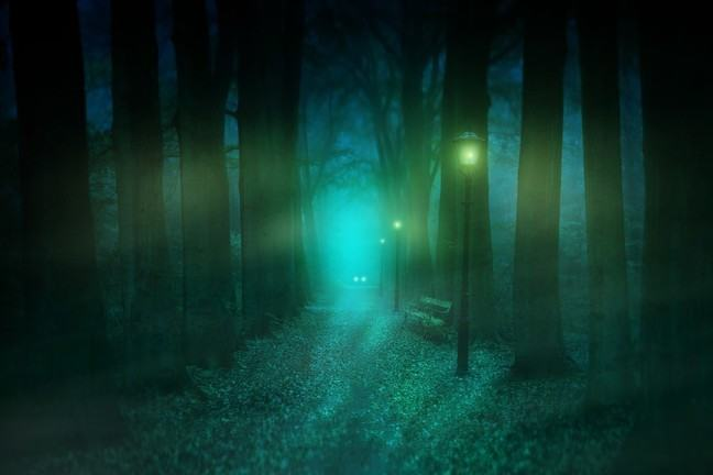 Gaslamps lighting the way through a dark forest