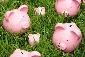 Piggy banks of different sizes on a lawn, representing personal finances