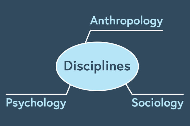 The word Disciplines appears in a bubble in the centre of the screen. The words Anthropology, Sociology and Psychology are connected to this bubble in the style of a mind map.