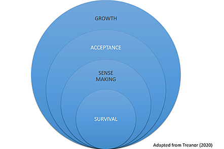 concentric circles with the words survival, sense making, acceptance and grow in each one