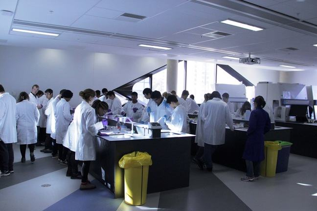 A number of students congregate in a lab