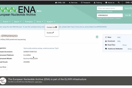 Screenshot of ENA database front page