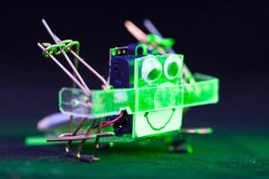 Scampi is a 28 gram walking robot created by Robotics student Rory Mangles and is mostly made of paperclips.