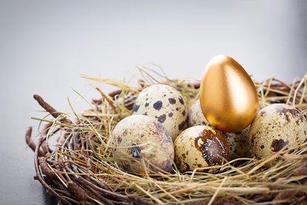 Eggs in a nest with one golden egg