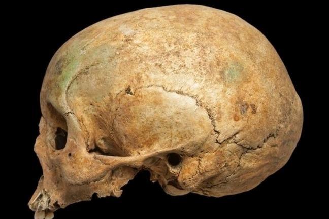 A female skull in profile