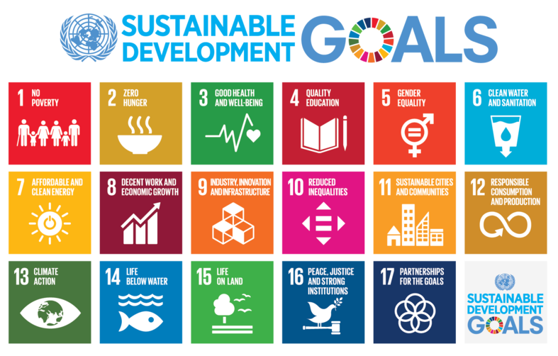 The United Nations Sustainable Development Goal's