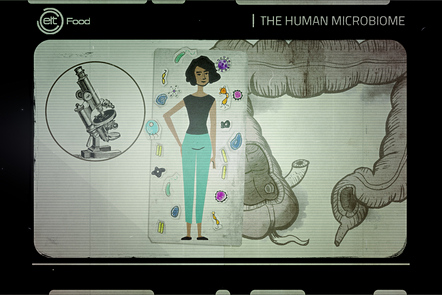 food and microbiome