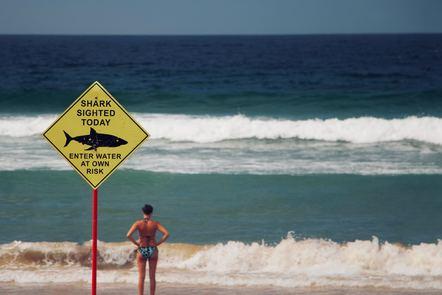 Shark danger sign at a beach